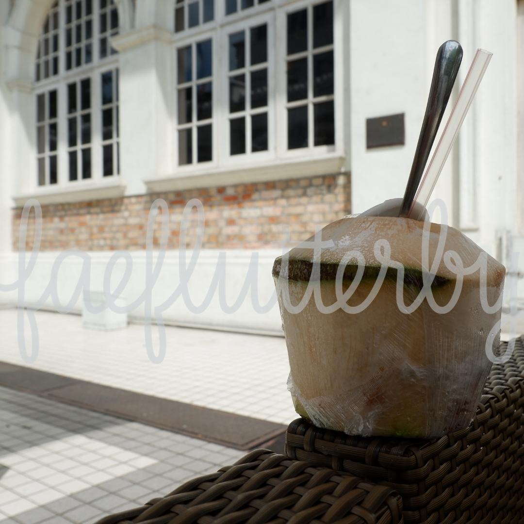 Fae Flutterby - Malaysia Budget & Itinerary_ Kuala Lumpur & Penang - Fresh Coconut