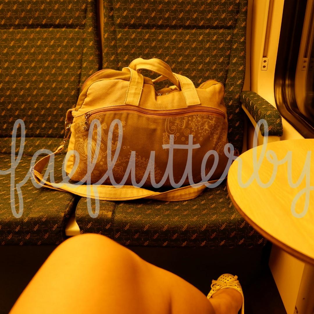 Fae Flutterby - Malaysia Budget & Itinerary_ Kuala Lumpur & Penang - KLIA Ekspres Interior