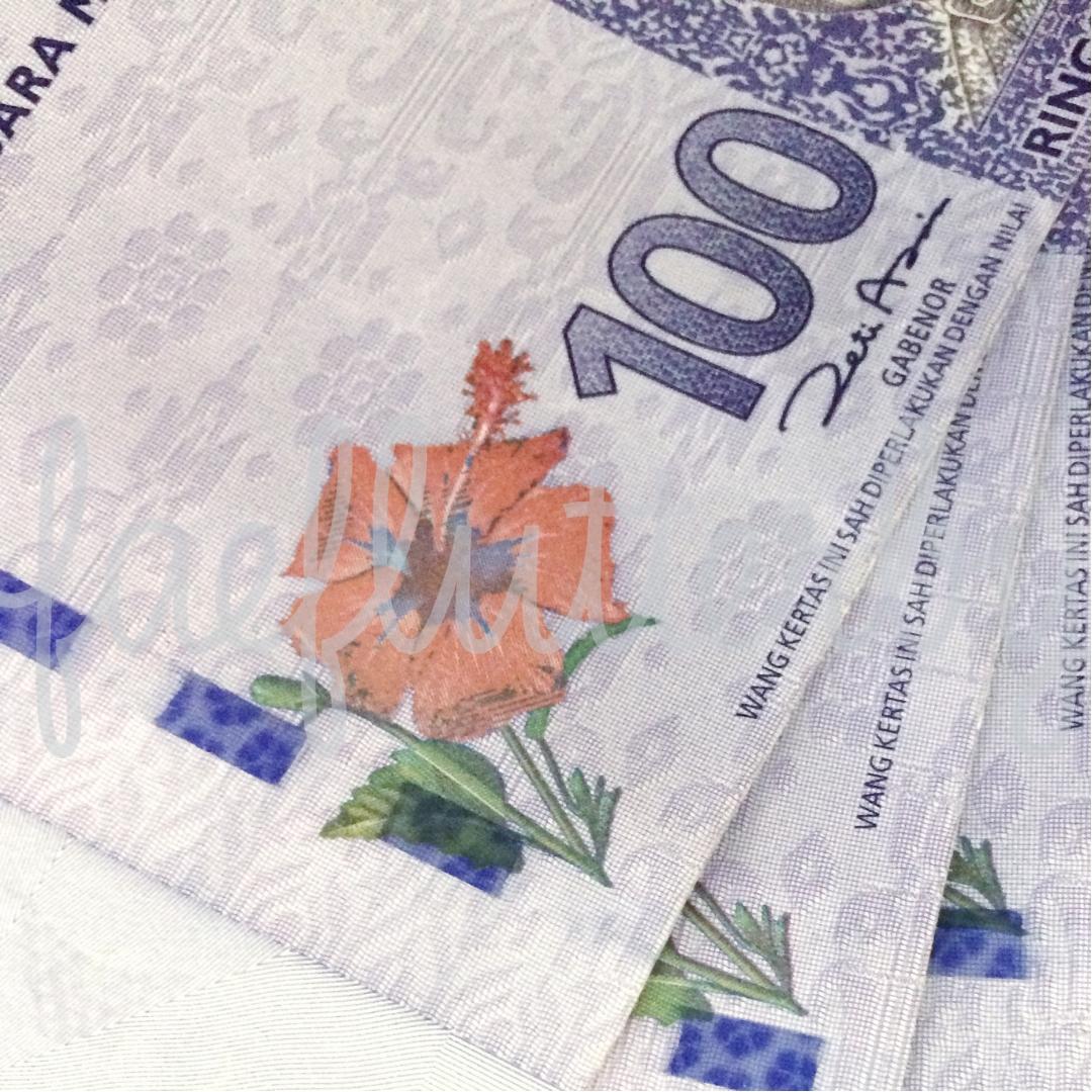 Fae Flutterby - Malaysia Budget & Itinerary_ Kuala Lumpur & Penang - Malaysian Ringgit