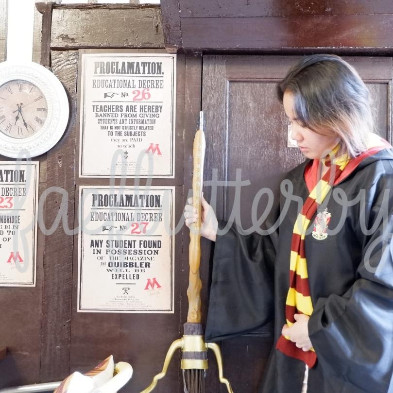 Fae Flutterby - Malaysia Budget & Itinerary_ Kuala Lumpur & Penang - Potterhead Malaysia Gryffindor Quidditch