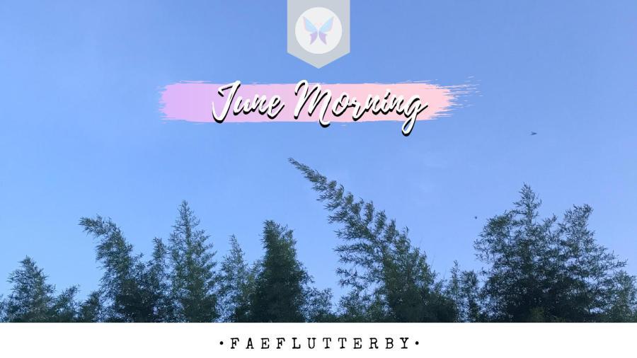 Fae Flutterby June Morning